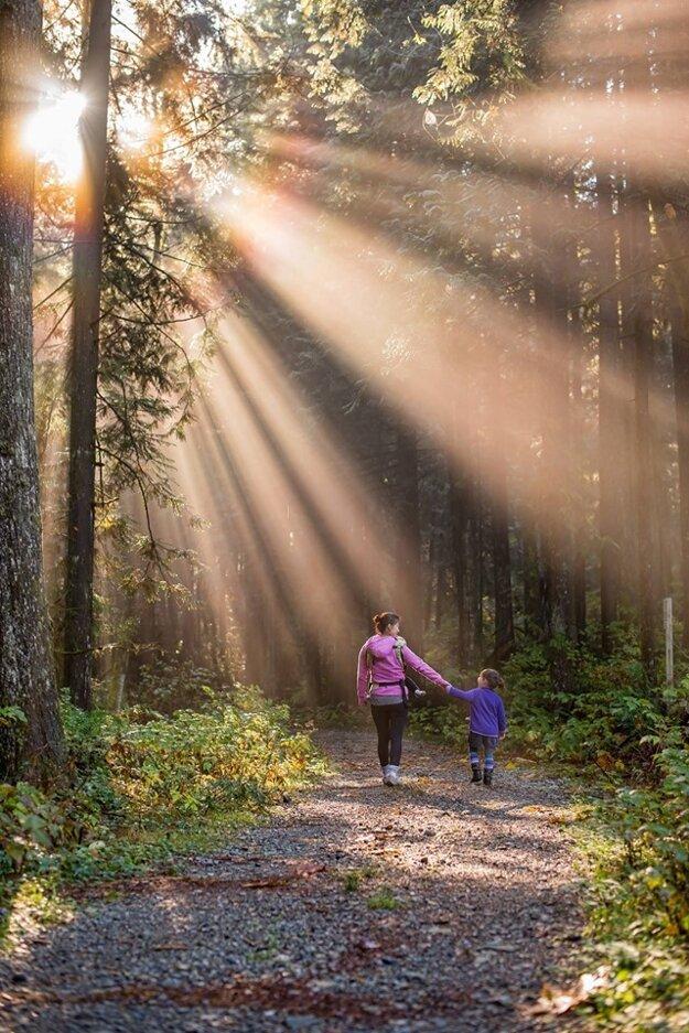 Prechádzka prírodou