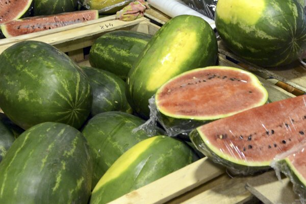 Slovenské melóny však dozrievajú až začiatkom júla.