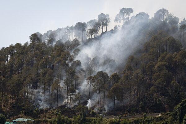 Talianski hasiči bojujú s lesnými požiarmi