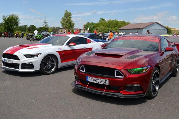 Mustangy pútali pozornosť.