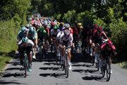 Na snímke pelotón cyklistov na trati desiatej etapy pretekov Tour de France zo Saint-Flour do Albi (217 km) 15. júla 2019.
