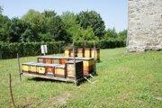 Ďalšie úle dokočovali do hradnej záhrady v uplynulých dňoch.