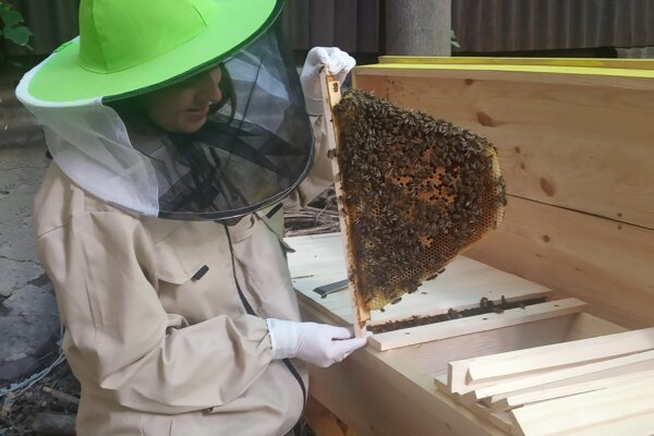 Včely fungujú ako jeden superorganizmus, vraví mladá včelárka.