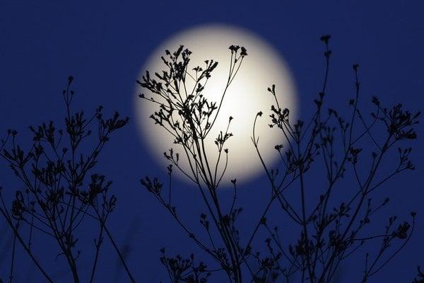 Lunárny kalendár zrejme využívali už pred desaťtisíc rokmi.