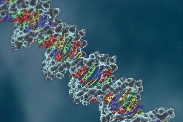 Pri rakovine treba poznať aj gény.