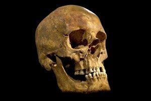 Kráľa Richarda III. preslávila hra Williama Shakespeara. <strike>Lebka kráľa, ktorý nechal zavraždiť dvoch malých princov v Tower Bridge.</strike>