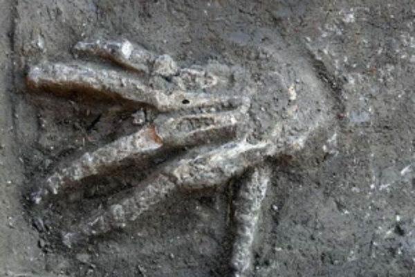 Odseknuté pravé ruky odkryli archeológovia v lokalite Tell el-Dab'a.