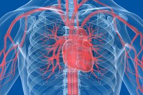 Budú raz srdce liečiť vlastné  kmeňové bunky pacientov?