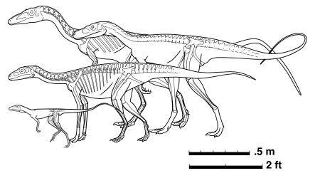 dinosaury_nastup4.jpg