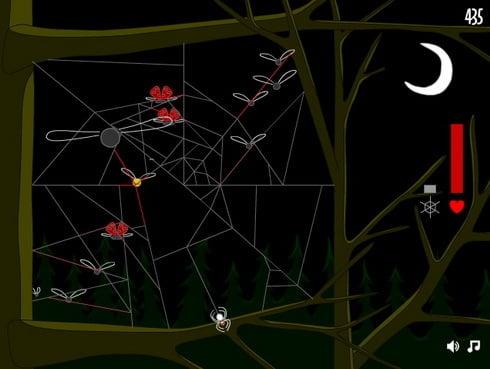 spider_web_b.jpg