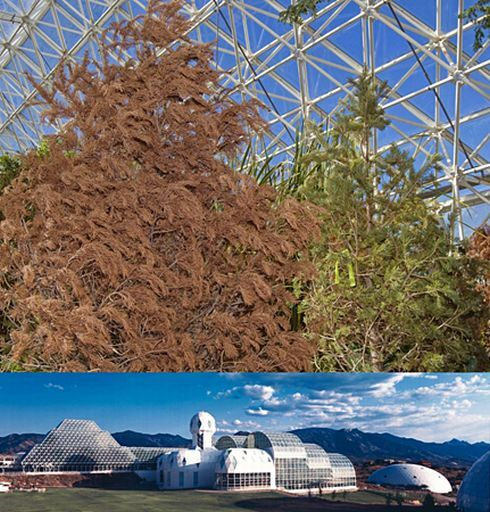 biosphere2.jpg