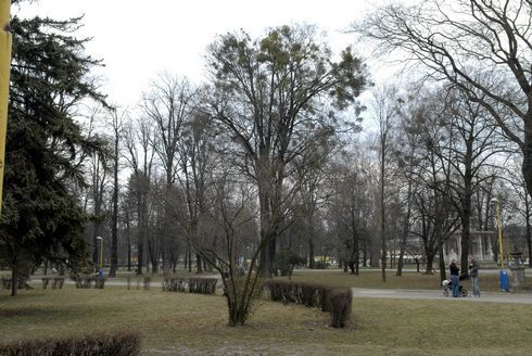 mestsky_park5veja_res.jpg