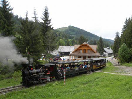 den-zeleznice-vo-vychylovke_450_r4792.jpg