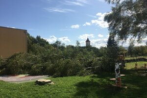 Spadnutý strom v areáli detvianskej materskej školy.