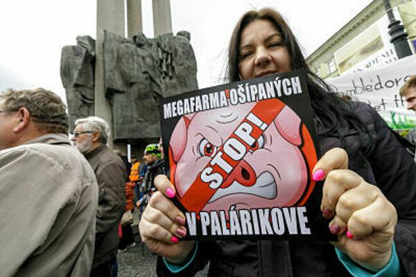 Z protestu proti farme ošípaných.