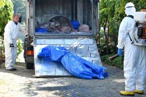 Každé vozidlo i priestory kafilérie musia byť po dodávke nebezpečného odpadu dezinfikované.