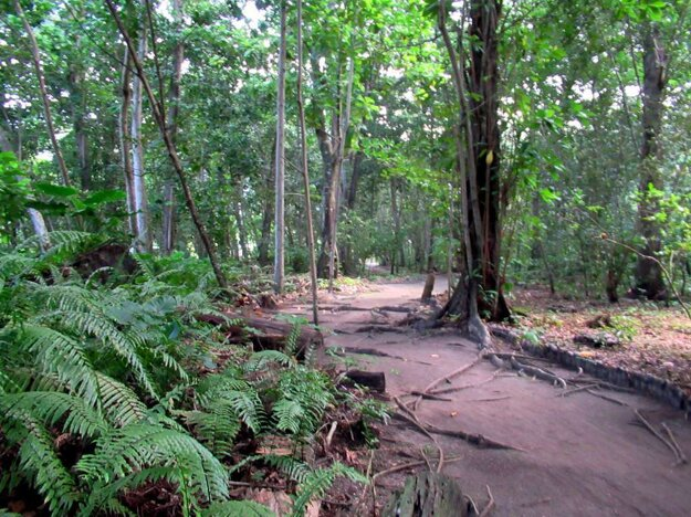Prírodná rezervácia Veuve, La Digue.