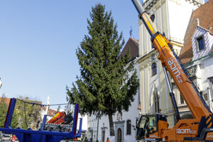 Osádzanie vianočného stromčeka na Hlavnom námestí v Bratislave.