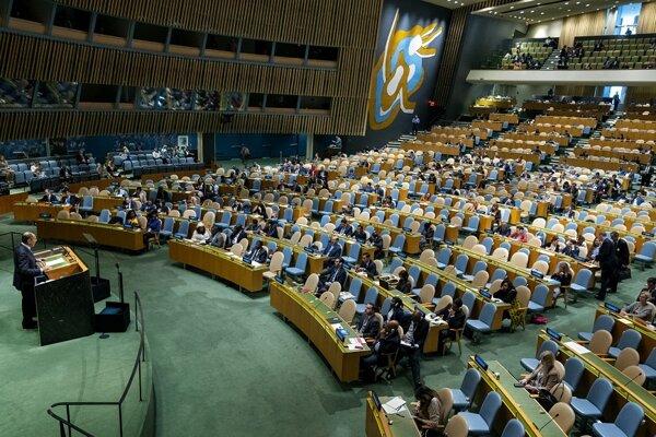 Valné zhromaždenie OSN - ilustračná fotografia.
