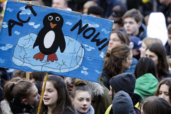Školáci protestujú aj v Berlíne.