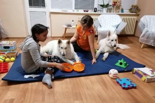 Canisterapia je jedna z foriem, ako onkologicky chorým deťom pomôcť v liečbe. V Košiciach je to pomerne bežné, ukrajinskí lekári sa prídu priučiť.