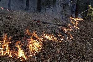 Lesné požiare v Austrálii pretrvávajú.