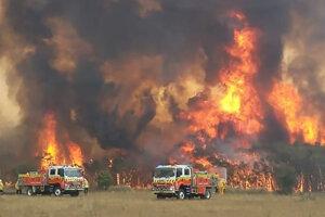 Hasiči sa snažia chrániť domy pred požiarom v austrálskom Charmhavene, 31. december 2019.