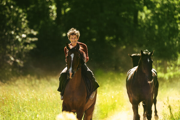 Nórsky film Poďme kradnúť kone.