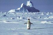 Najtragickejšia situácia bola v januári v Antarktíde a Arktíde, kde sa ľadová pokrývka topí bezprecedentným spôsobom, čo predstavuje vážne ohrozenie pre celú planétu.