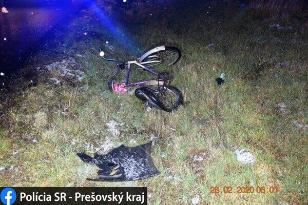 Tragická nehoda sa stala v obci Nižný Hrušov (okres Vranov nad Topľou).
