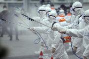 Vojaci počas dezinfekčných prác v juhokórejskom meste Daegu.