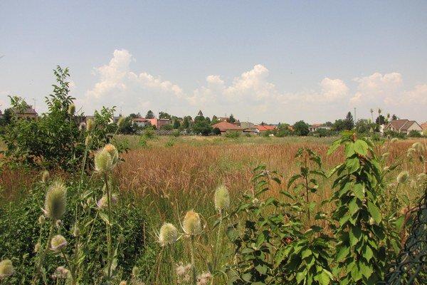 Zarastený pozemok patrí manželke Igora Matoviča.