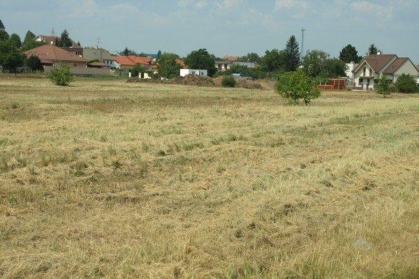 Krajčovič sa domáhal pokosenia susedného pozemku už od mája.
