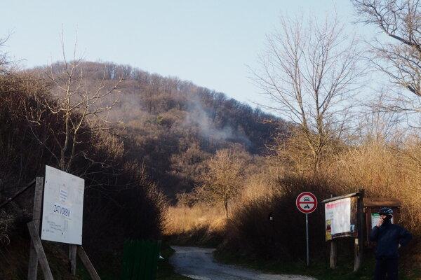 Požiar sa hasičom podarilo rýchlo uhasiť.