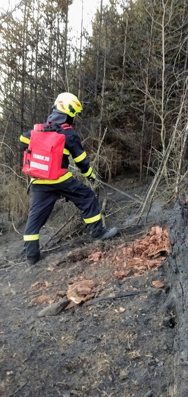 Likvidácia lesného požiaru