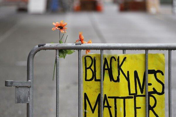 Ilustračná fotografia. Vedci, univerzity, výskumné organizácie aj vydavateľstvá v stredu prerušili svoju činnosť, aby sa zapojili do protestov proti rasizmu.