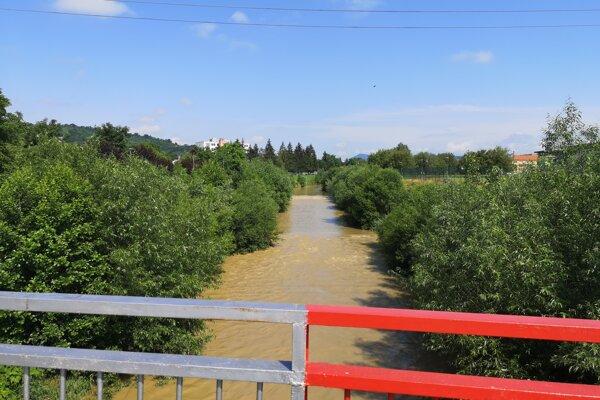 Prešovčania kritizujú brehy Torysy zarastené náletovými drevinami. Obávajú sa, že pri prívalovej vlne to môže spôsobiť veľké problémy.