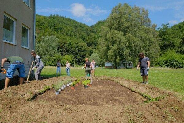 Dažďové záhradky a jazierka majú pomôcť lepšie hospodáriť so zrážkovou vodou.