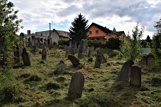 Starší židovský cintorín v Lučenci sa aktuálne snaží skupinka dobrovoľníkov postupne čoistiť od náletových drevín.