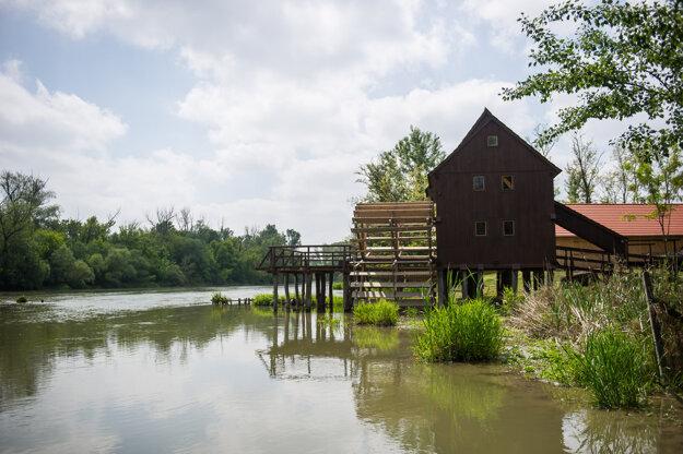 Vodný kolový mlyn a rieka Malý Dunaj v lete, Jelka