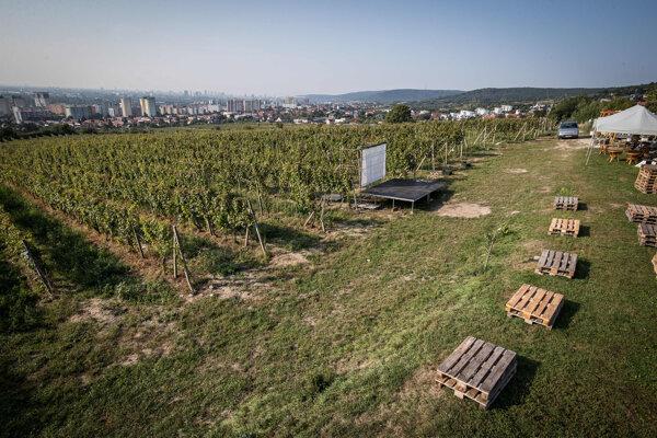 Z vinice Tále je výhľad na Bratislavu, nachádza sa tu aj posedenie pre návštevníkov a malé pódium.