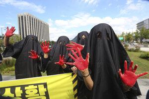 Aktivisti v Južnej Kórei počas výstupu, ktorým chceli znázorniť horiacu planétu.