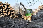 Firma skladuje stovky ton drevnej hmoty z výrubu neďaleko Slaneckej.