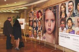 Výstava Krása okamihu v DAB potrvá do konca mája.