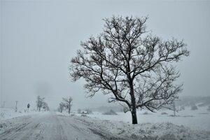 Zima v Polichne teší aj trápi.