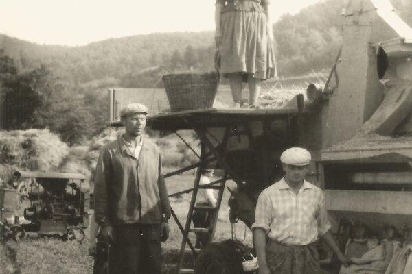 Mlátenie zbožia v roku 1960.
