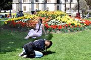 Kvetinové záhony sú nielen na jar mimoriadne fotogenickým miestom.