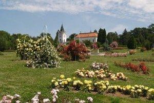 Arborétum je unikátnym parkom, ktoré počtom a rozmanitosťou drevín nemá v strednej Európe konkurenciu.