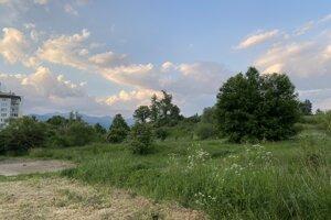 Lokalita v Košútoch, v ktorej sa umiestnenie ihriska zvažuje.