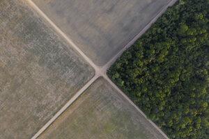 Časť brazílskeho Amazonského pralesa sa nachádza vedľa sójových polí v Belterre, brazílskom štáte Pará. Brazílsky Amazonský prales zaznamenal vo výskyte lesných požiarov najhorší jún od roku 2007.